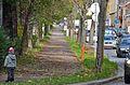 Auer-Welsbach-Park along Winckelmannstraße, Vienna.jpg