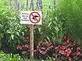 Austria august2010 0111.jpg
