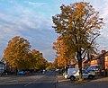 Autumn along Saffron Lane - geograph.org.uk - 1001976.jpg