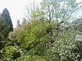 Az ungvári botanikus kert bejárata.jpg