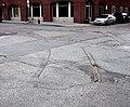 Babcock Street tracks.JPG