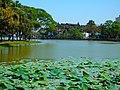 Bahan, Yangon, Myanmar (Burma) - panoramio (9).jpg