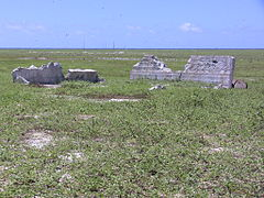 Settlement remains, radio mast in background