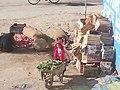 Baloch lands - Girl at work in Balochistan (Pakistan).jpg