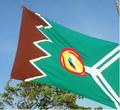 Bandera de la Comarca Ngäbe Buglé.png
