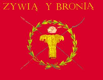 Battle of Maciejowice - Image: Banner of Kosciuszko Uprising flat
