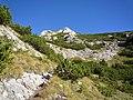 Bansko, Bulgaria - panoramio - Красимир Косев (8).jpg
