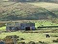 Barn near Byerhope Farm - geograph.org.uk - 1057679.jpg