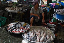 Basa fish - Vinh Long Market.jpg