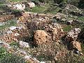 Beitar-104.jpg
