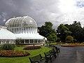 Belfast Botanic Gardens glasshouse.jpg