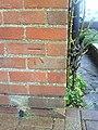 Benchmark on ^66 Brasenose Road - geograph.org.uk - 2156082.jpg