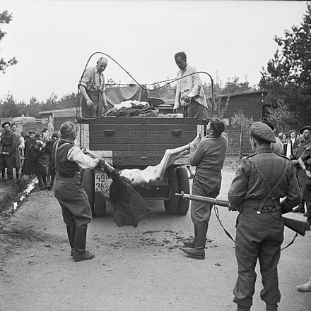 Former guards are made to load the bodies of dead prisoners onto a truck for burial, April 17-18, 1945 Bergen Belsen Liberation 01.jpg