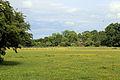 Betts Lane field at Nazeing, Essex, England 01.JPG