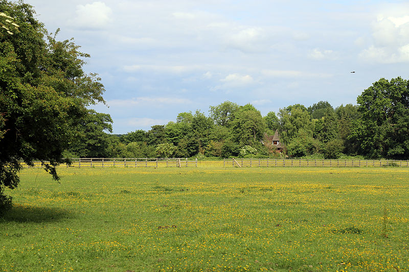 File:Betts Lane field at Nazeing, Essex, England 01.JPG