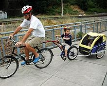 Bike Trailer for Toddlers and Small Children