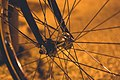 Bicycle wheel (Unsplash).jpg