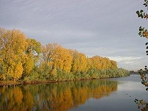 Naturschutzgebiet Lampertheimer Altrhein Wikipedia