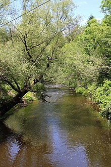 Big Wapwallopen Creek looking upstream in June.JPG