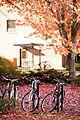 Bikes campus Fall (15729399982).jpg