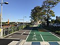 Bikeway and footpath along Brisbane River in Toowong, Queensland, Australia 03.jpg