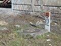 Billy-Montigny - Fosse n° 2 des mines de Courrières (12).JPG