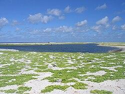 Birnie Island Lagoon.jpg