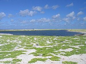 Birnie Island - Image: Birnie Island Lagoon