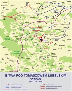 41st Infantry Division (Poland) Military unit