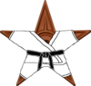 The Black Belt Barnstar
