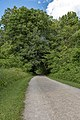 Blacklick Woods - A shaded bench along the trail 1.jpg