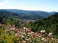 Blick auf Loffenau, Schwarzwald, black forest, forêt noire - panoramio.jpg