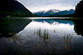 Blue calm on Kenai Lake.jpg