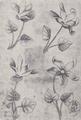 Blumen-Vier (Meister der Spielkarten).png