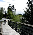 Board-built sidewalk. VIEW IN PANORAMIO FOR DESCRIPTION - panoramio (1).jpg
