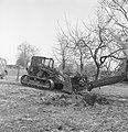 Bomen, machines, werktuigen, kuilen, Bestanddeelnr 251-8695.jpg