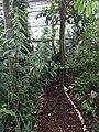 Botanische tuinen Utrecht 36.jpg