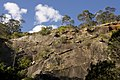 Bowral NSW 2576, Australia - panoramio (120).jpg