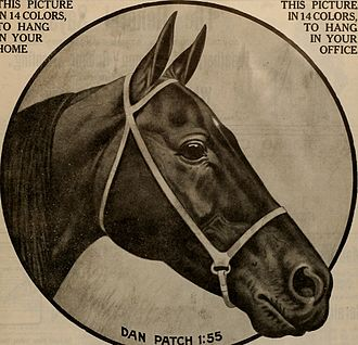 Dan Patch - Dan Patch 1:55, an advertisement from Breeder and Sportsman (1911)