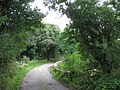 Bridge over Afon Erddreiniog - geograph.org.uk - 1189275.jpg