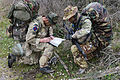 British and Italian Soldiers Working Together MOD 45155613.jpg