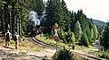 Brockenbahn (29477708652).jpg