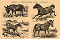 Brockhaus and Efron Encyclopedic Dictionary b35 042-0.jpg
