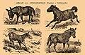 Brockhaus and Efron Encyclopedic Dictionary b35 042-0.jpg
