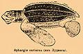 Brockhaus and Efron Encyclopedic Dictionary b76 548-2.jpg