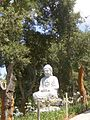 Buddha eden (93).JPG