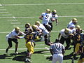 Buffaloes on offense at Colorado at Cal 2010-09-11 49.JPG