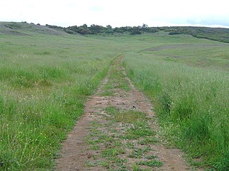 Santa Rosa Plateau - Purple Needlegrass Prairie