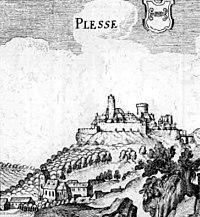 Burg Plesse De Merian Hassiae.jpg