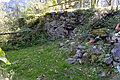 Burgruine am Taxenbacher Schlossberg 02.JPG
